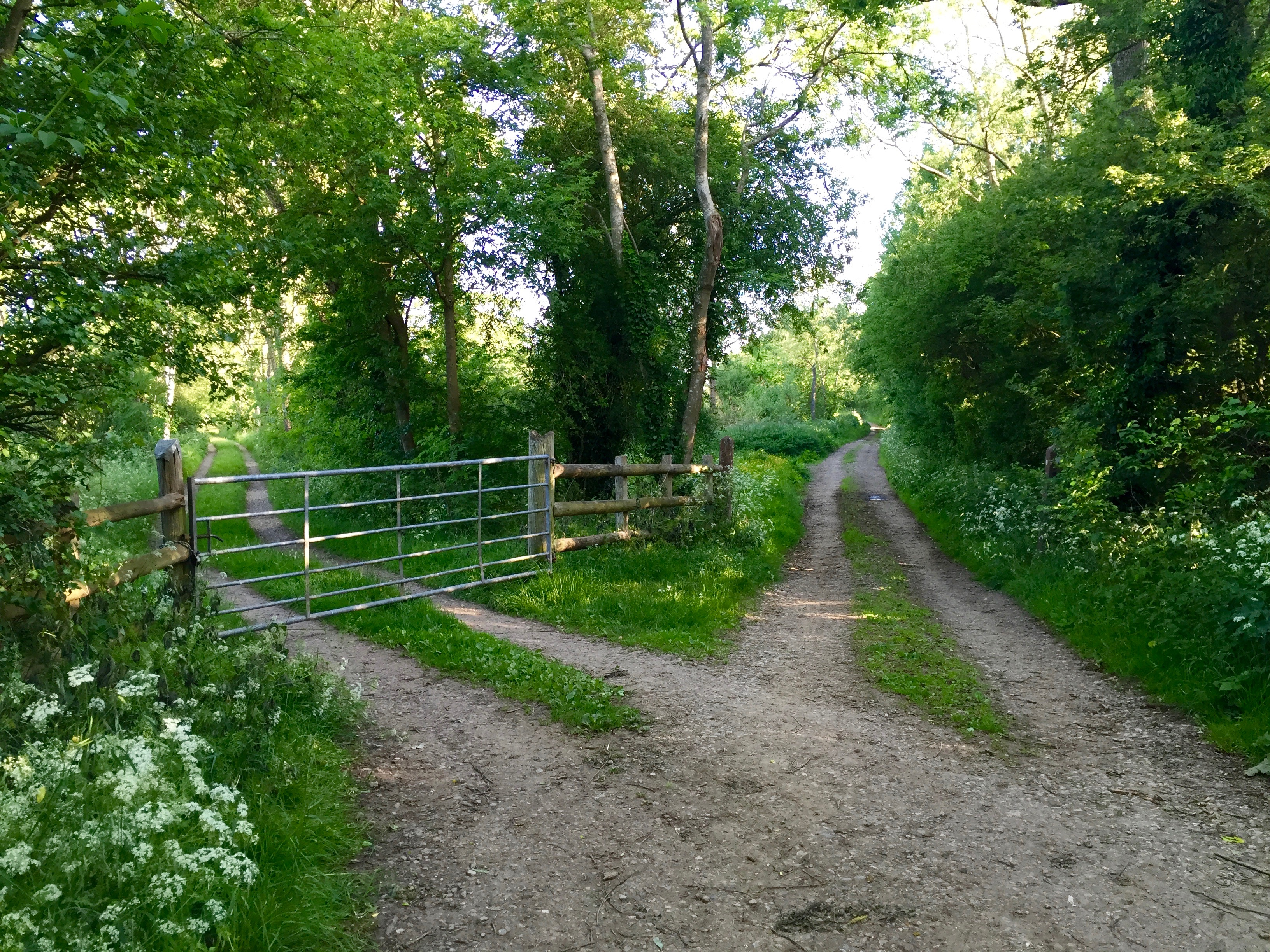 Cotswolds_walkingpaths